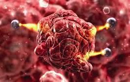 Nanotechnology In Medical: Massive Potential, However What Are The Dangers?